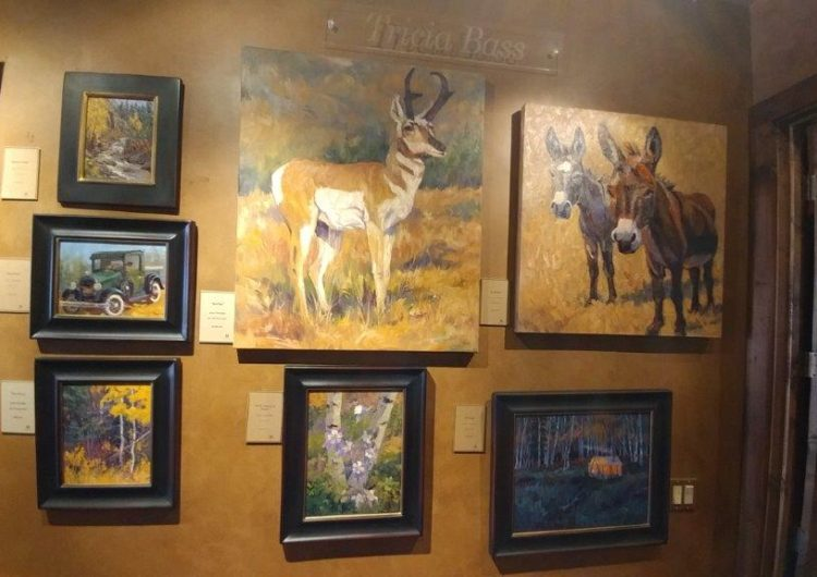 Tricia Bass oil paintings